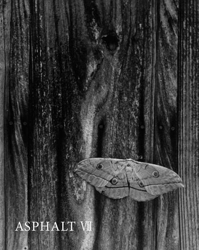 cover image – Asphalt VII